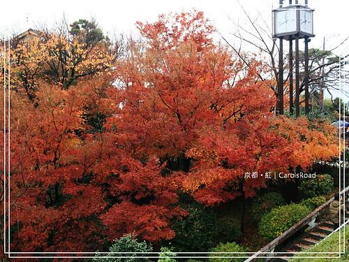 2009-12-11 京都 065 R