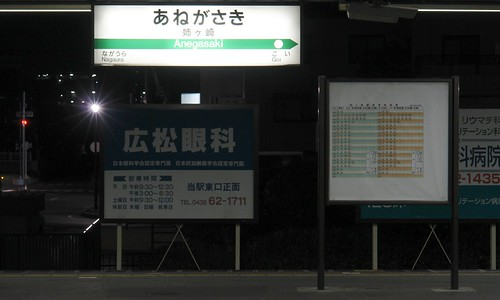JR Anegasaki station