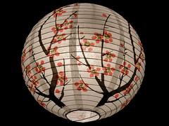 #9366 ume, first flower of spring (Nemo's great uncle) Tags: geotagged lantern ume prunus  nebukawa japaneseapricot   kanagawaprefecture   geo:lat=35202989 geo:lon=139140639