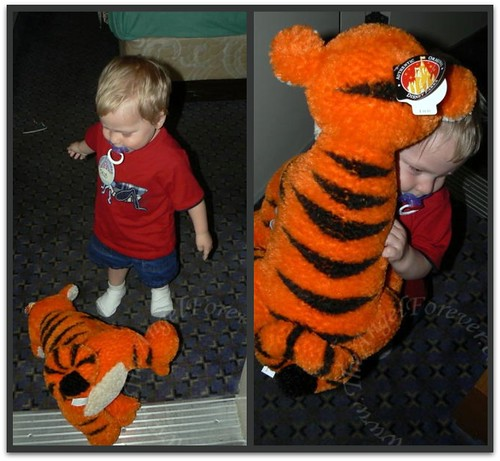 The birthday boy and Tigger