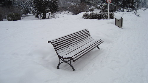 Iarna-n parc