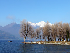 Lago Maggiore (duqueros) Tags: italien trees winter italy mountain lake berg lago see europa europe italia bume lagomaggiore lombardei maccagno duqueiros updatecollection bestofmywinners