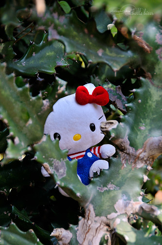 Hello Kitty - 56/365 Photo