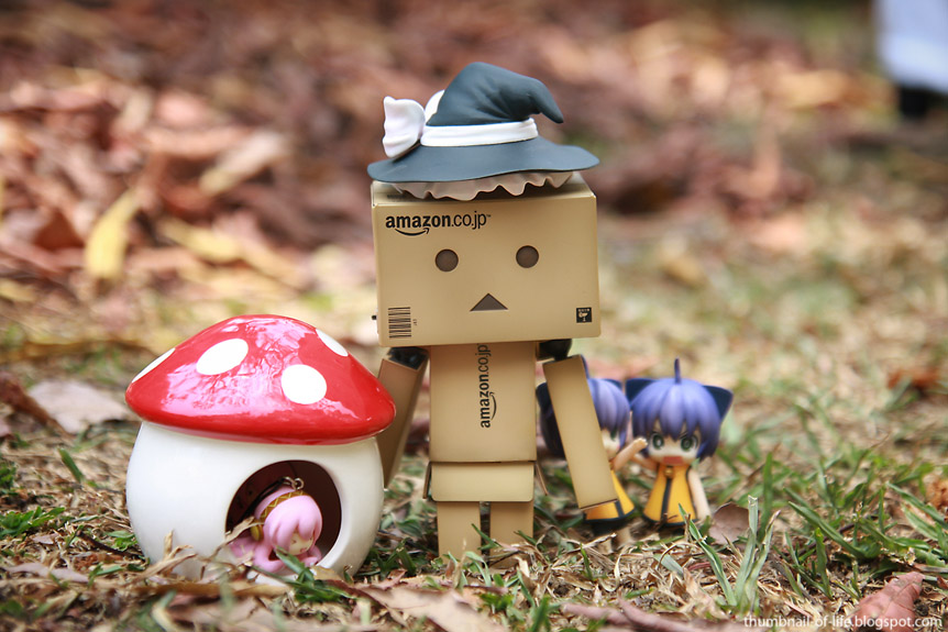 Wizard of Danbo