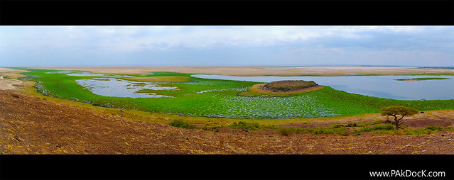 Lake Amboseli  (pan. view)