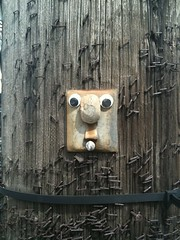 The world needs more googly eyes