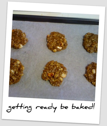 Macadamia Anzac biscuits waiting to go in oven