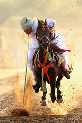 At The nail! (Nadeem Khawar.) Tags: pakistan horse art culture punjab numberone aclass villagelife artisticphotos tentpegging abigfave tentpegger nadeemkhawar cultureofpakistan micartttt roralpunjab