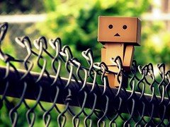 The Fence (willycoolpics.) Tags: metal canon fence gate dof bokeh picnik danbo s3is revoltech viewonblack bighugelabs danboard notthebesttitleanddescriptionintheworldbutitwasallicouldcomeupwith lookscoolertomed notsogoodcomposition