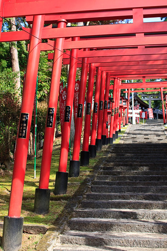 11.08 Ojiyama Park - Sasayama4