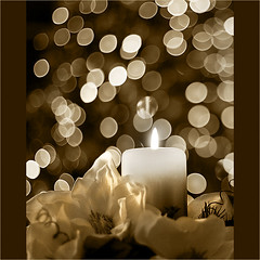Bokeh and Candlelight (Ingrid Douglas Images - ART in Photography) Tags: bokeh christmaslights explore candlelight frontpage christmastreelights 50mmlens bokehlicious perfectoarts firstadventcandle ingridinoz candlelightinbokeh sepiaandchristmaslights