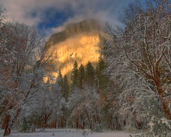 El Capitan and Oaks, Yosemite, CA.  December 8, 2009 (Robert Pearce Photography) Tags: california trees winter light cloud snow fog landscape gold december sierra yosemite granite oaks elcapitan 2008 yosemitevalley yosemiteblog nikond200 lightband robertpearce sierrasolstice robertpearce