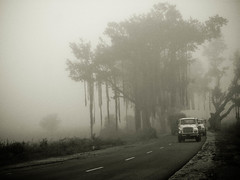 way to . OOTY ... [Explored !!!] (Kanishka **) Tags: road trip travel car fog smog tour ooty longshot kanishka