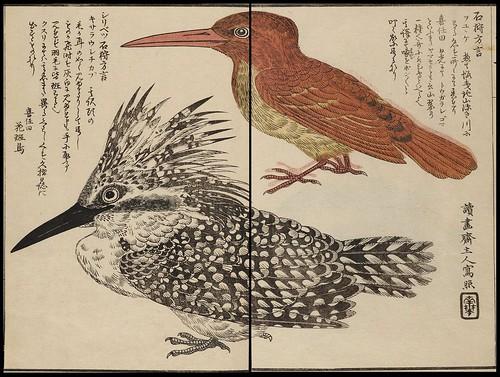 Matsuura Takeshiro - Ishikari nisshi (1860)