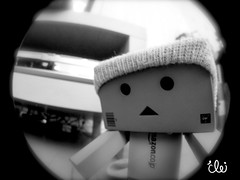 Beanie (Cherrybomb Ink) Tags: holiday photoshop toy photography blackwhite powershot fisheye cherrybomb japanesetoy danbo amazoncojp toyfigure funphotography optekafisheye canons5 danboard cherrybombink