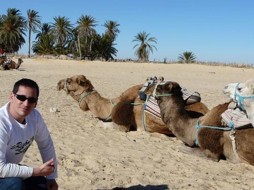 46c83fdc9ae1c Aunque no sé para qué queríamos tantas fotos. Teníamos decenas de imágenes de  camellos