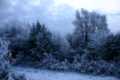 Blue light (Vratsagirl) Tags: ireland winter snow galway oughterard canrawer january2010snow