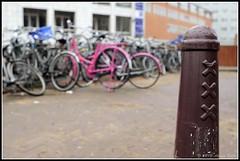 Amsterdam xxx (Alvaro Valle Guerra) Tags: madrid holland netherlands amsterdam photography nederland holanda marken zaanseschans volendam waterland edam monnickendam paisesbajos valleguerra amsterdamholandamarkenvolendamedammonikendamnederland waterlam monnikendammadrid alvarovalle avg1972 alvarovalleguerra avg1972gmailcom safecreative1103090354653 avg1972gmailcomvalleguerragmailcomalvaro vallestreetphotographerstreet