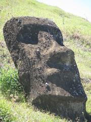 IMG_1332 (Brenda_SF) Tags: easterisland ranoraraku