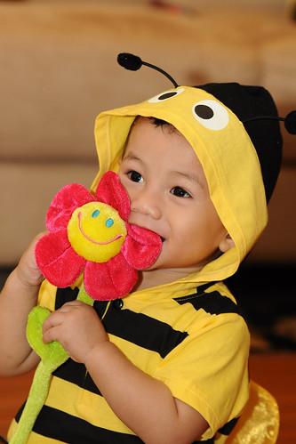 Amirul Bee 1