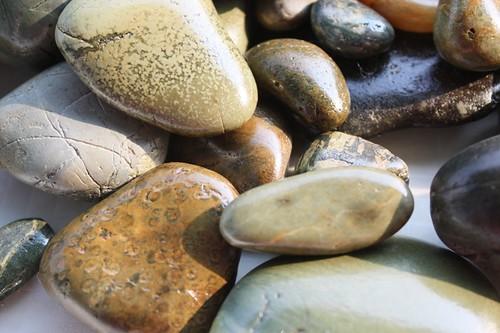 river rocks25