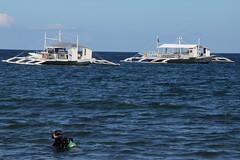 Dauin beach