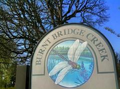 Burnt Bridge Creek Greenway