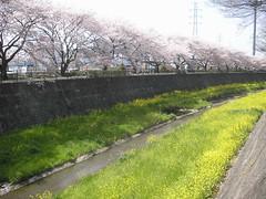 20100411_124410