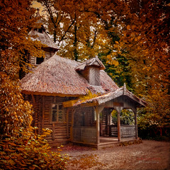 watermill (ildikoneer) Tags: building tree texture nature photoshop canon eos hungary arboretum watermill lightroom vcrtt cs5 40d colorphotoaward