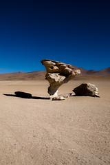 Désert de Dali (Bolivie, juillet 2009)