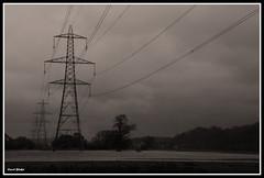 Pylons in Flooded Fields (Frog n fries) Tags: blackandwhite water devon pylons floods riverexe blackwhitephotos stokecanon solofotos