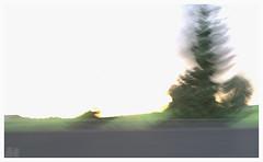 Fuzzy Impressions (fs999) Tags: landscape pentax fuzzy sdm impressions paysage flou aficionados k7 artcafe aupassage alignements vob digitalcameraclub dastar newk ashotadayorso justpentax topqualityimage flickrlovers da55 topqualityimageonly fs999 pentaxart pentaxda55mmf14sdm pentaxk7 pourfredbouaine