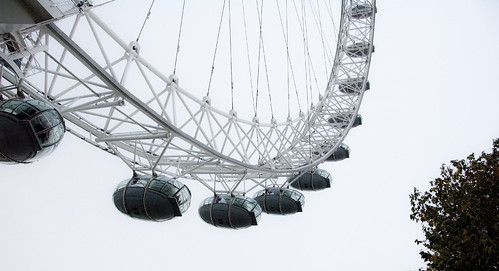 london eye tree