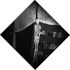 holga bones (loganbertram) Tags: blackandwhite bw white black 120 film mediumformat photography holga iso 400 plus hp5 medium format logan ilford unc bertram 400iso holga120n loganbertram loganbertramphotography