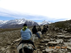 802 (Dipas Dute) Tags: travel india animal canon countryside background hill agriculture picturesque rohtangpass himachal kartpostal heavenlike dipas goldstaraward abovealltherest thebestofcengizsqueezeme2groups