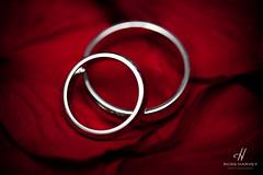 Silver on Roses (Ross Harvey | www.rossharvey.com) Tags: wedding red roses macro silver nikon flash ring rings d3 strobe 105vr sb900 rossharvey
