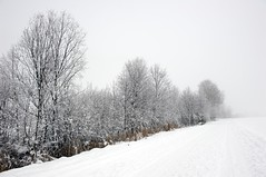 Inverno... (paolo-55) Tags: nikon neve nebbia altoadige d700 valledianterselva 2470mmf28zoomnikkor