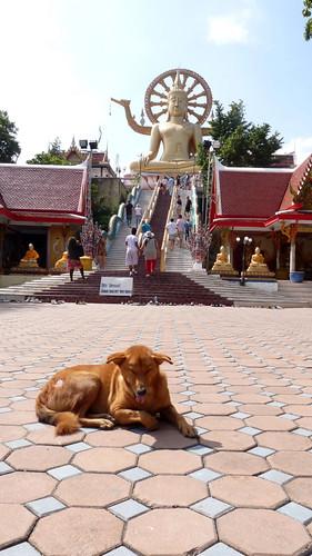 Koh Samui Wat Prayai コサムイ プラヤイ寺