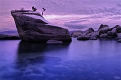 Bonsai Rock Study #3 - Lake Tahoe, Nevada, USA