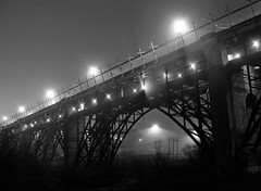 Foggy Viaduct (JeffStewartPhotos) Tags: blackandwhite bw toronto ontario canada fog night blackwhite foggy viaduct nighttime princeedwardviaduct bloorviaduct bloorstreetviaduct