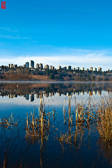 Metrotown from Deer lake (Yang^3) Tags: blue sky canada water vancouver mirror smooth burnaby metrotown deerlake