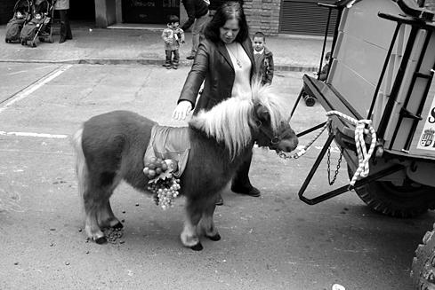 pony-lady