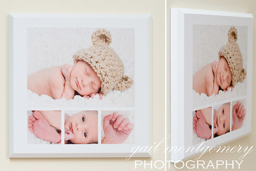 Baltimore Maryland Baby Child Family Photographer GALLERY MOUNT