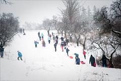 Winter in der Stadt [Michaela Turner] (m:turner) Tags: wien winter steinhof