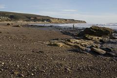 Searching in the distance (Damian Gadal) Tags: california beach geotagged nikon january lowtide 2010 jalamabeach d80 nikond80