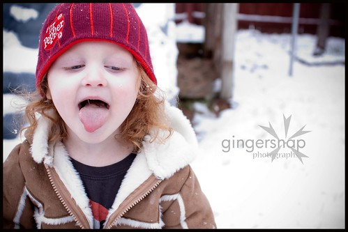 feb snow day6