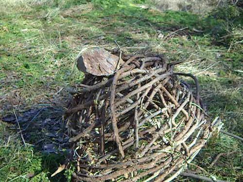 Native American bird trap