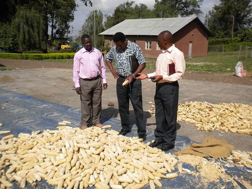ASA farm in Arusha