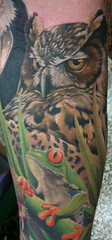 Owl and frog (Sean Karn) Tags: portrait animals wildlife tattoos realism