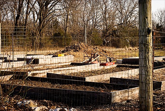 2010 gardening march 5